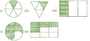 Class_6_Maths_Fractions_Shading_Of_Fraction_1