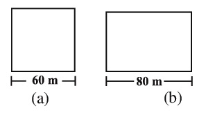 Class_8_Maths_Mensuration_Square_&_Rectangle_Field