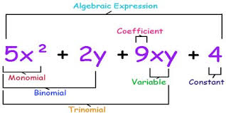 Class_7_Maths_Algebraic_Expressions_Types_Of_Algebraic_Expressions