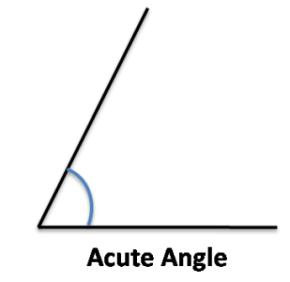 Class_6_Maths_Understanding_Elementary_Shapes_Acute_Angle