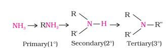 Class_12_Chemistry_Amines_Classification_Of_Amines