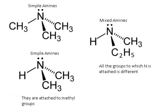 Class_12_Chemistry_Amines_Classification_Of_Amines2
