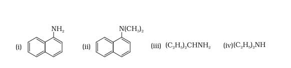 Class_12_Chemistry_Amines_Classification_Of_Amines3