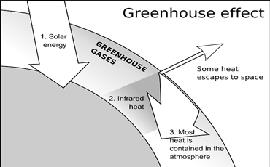 Class_12_biology_Environmental_GreenHouse_Effect
