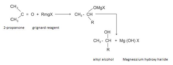 Class_12_Aldehydes_&_Ketones_Addition_Of_Grignard_Reaction