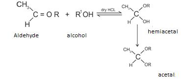 Class_12_Aldehydes_&_Ketones_Addition_Of_Alcohols