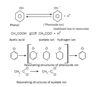 Class_12_Chemistry_Carboxylic_Acid_Comparison_Of_Alcohol_Phenols_Acids_1