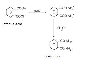 Class_12_Chemistry_Carboxylic_Acid_Reaction_With_Ammonia
