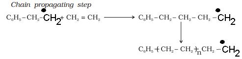 Class_12_Chemistry_Polymers_Chain_Propagating_Step