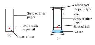 Class_9_Is_Matter_Around_Us_Pure_Matter_Chromatography